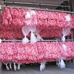 Hanging Garment Transport Leeds